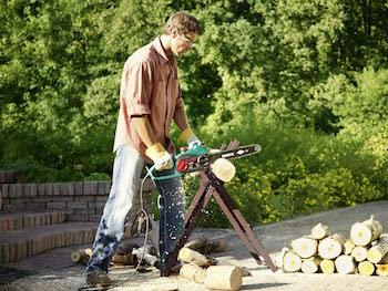 Bosch Home and Garden 0600834400 Bosch Sierra de Cadena