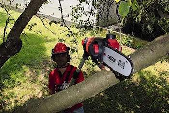 Einhell Expert 3410810 Motosierra telescópica de altura GE-CL 18 Li T